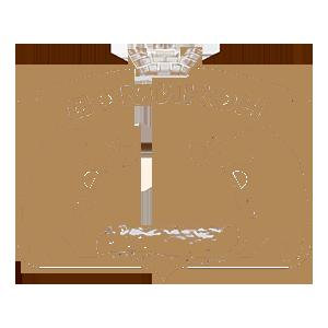Logo_domikon_300x300_theme_color